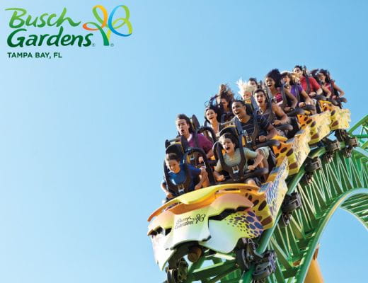 Multi Park Tickets At Seaworld Orlando Busch Gardens