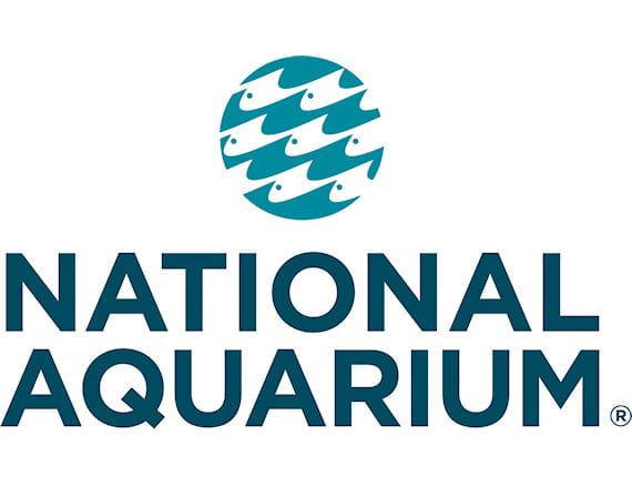 About National Aquarium