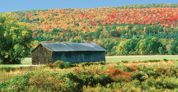 Three Fall Foliage Drives in the US