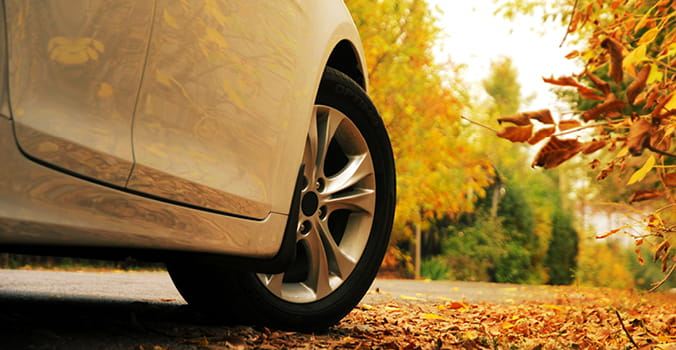 Close up of a cars tire on the road with fall leaves