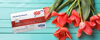 AAA Member Rewards Visa, apply now