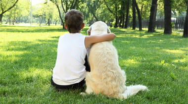 Boy being Affectionate with Dog at the Park
