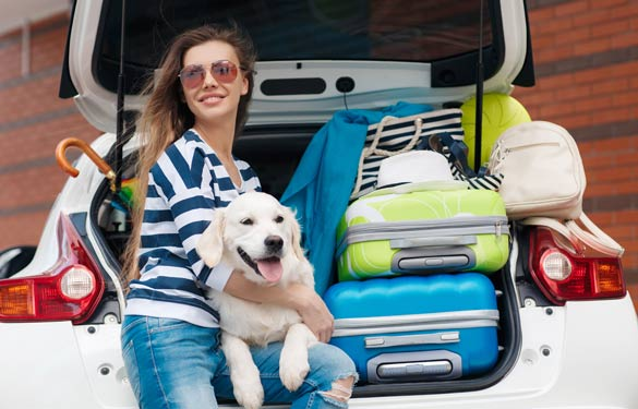 Girl in packed trunk of car with dog