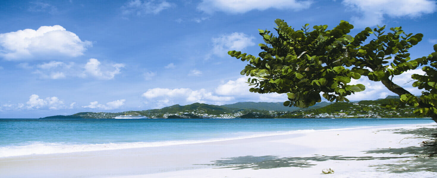 Panoramic view of a beach in the Caribbean on a sunny day