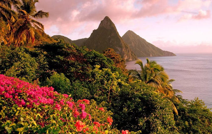Gros Piton overlooking tropical flowers