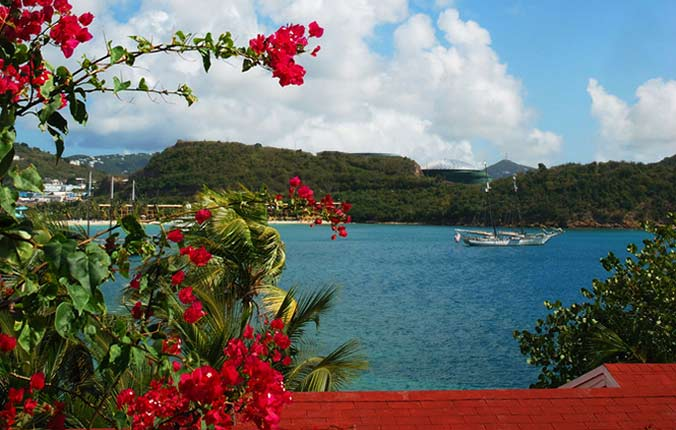Red flowers overlooking Caribbean bay