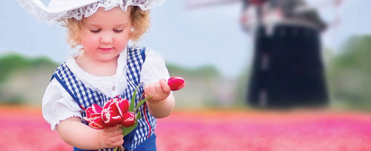 Young girl picking tulips in a field of tulips.