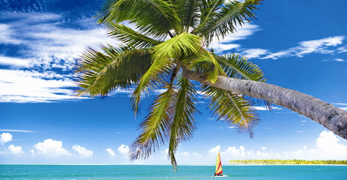 Caribbean Destinations