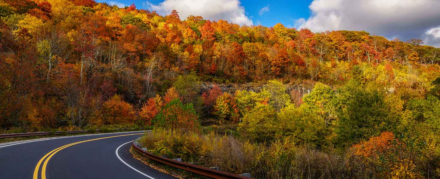Long road sweeping through colorful fall foliage.