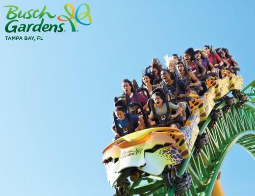 Choose Your Adventure Seaworld Orlando Busch Gardens Tampa Bay Aquatica Orlando Adventure